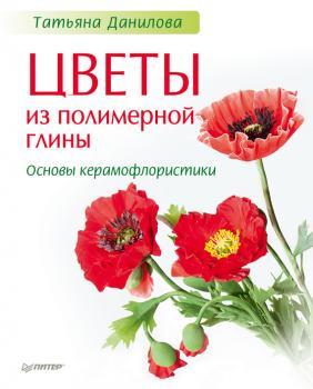 фотография популярный самоучитель татьяна данилова