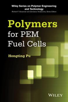 Polymers for PEM Fuel Cells - Hongting  Pu