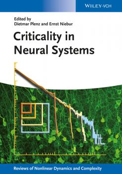 Criticality in Neural Systems - Dietmar  Plenz