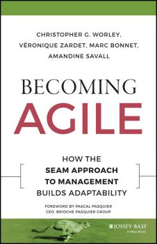 Becoming Agile. How the SEAM Approach to Management Builds Adaptability - Veronique  Zardet