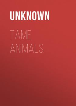 Tame Animals - Unknown