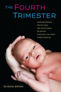 The Fourth Trimester - Susan Brink