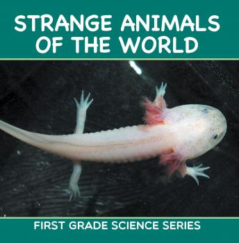 Strange Animals Of The World : First Grade Science Series - Baby Professor Animal Encyclopedia For Kids