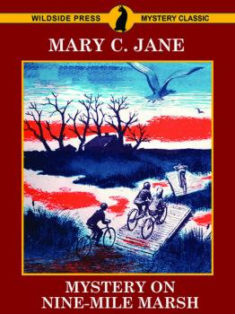 Mystery on Nine-Mile Marsh - Mary C. Jane
