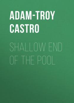 Shallow End of the Pool - Adam-Troy  Castro